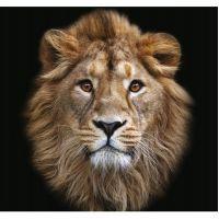 Фотообои виниловые на флизелиновой основе Decocode Голова льва 31-0064-NB 3х2,8 м