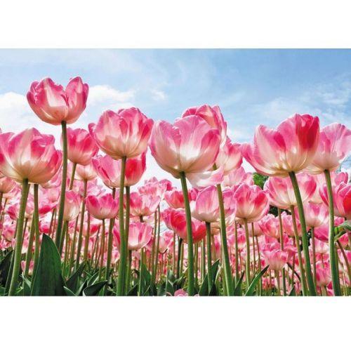 Фотообои виниловые на флизелиновой основе Decocode Лес тюльпанов 41-0223-FR 4х2,8 м