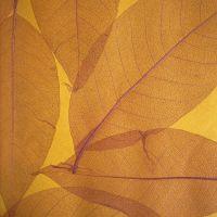 Обои натуральные Дизайн Тропик покрытие Листья S-9